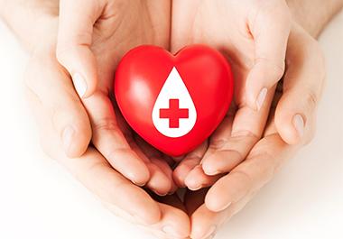사랑의 헌혈